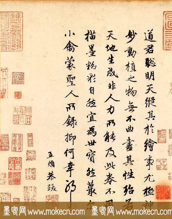 赵孟頫行书欣赏《跋赵佶竹禽图》
